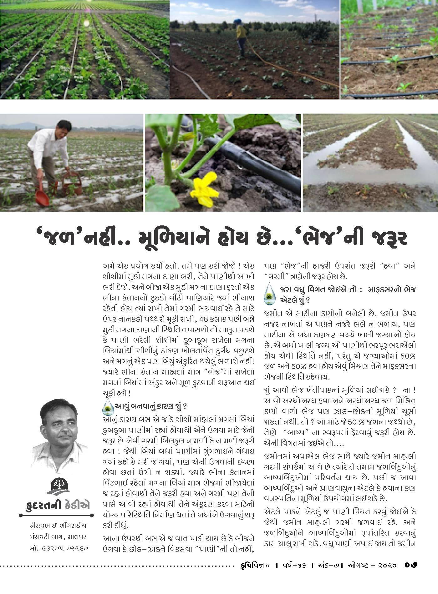 કુદરતની કેડીએ : જળ નહિ મુળિયાને હોય છે ભેજની જરૂર