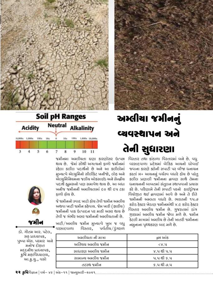 જમીન : અમ્લીય જમીનનું વ્યવસ્થાપન અને તેની સુધારણા